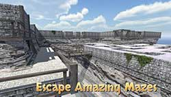 疯狂3D迷宫截图